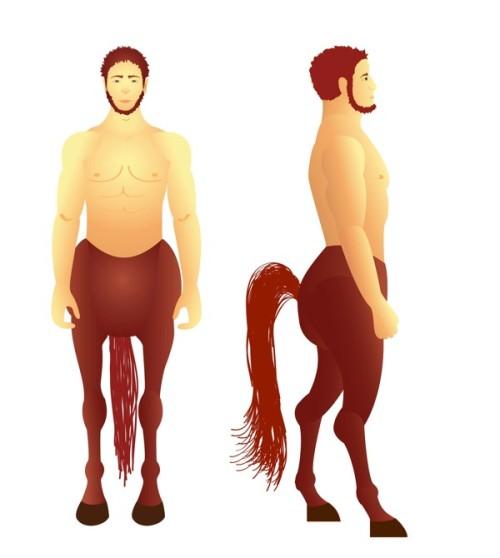 Horseman by Magdalena Przegalinska